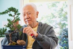 Японцы считают, что в старости важно найти икигаи («смысл жизни») – кто-то обращается к каллиграфии, кто-то осваивает новую профессию