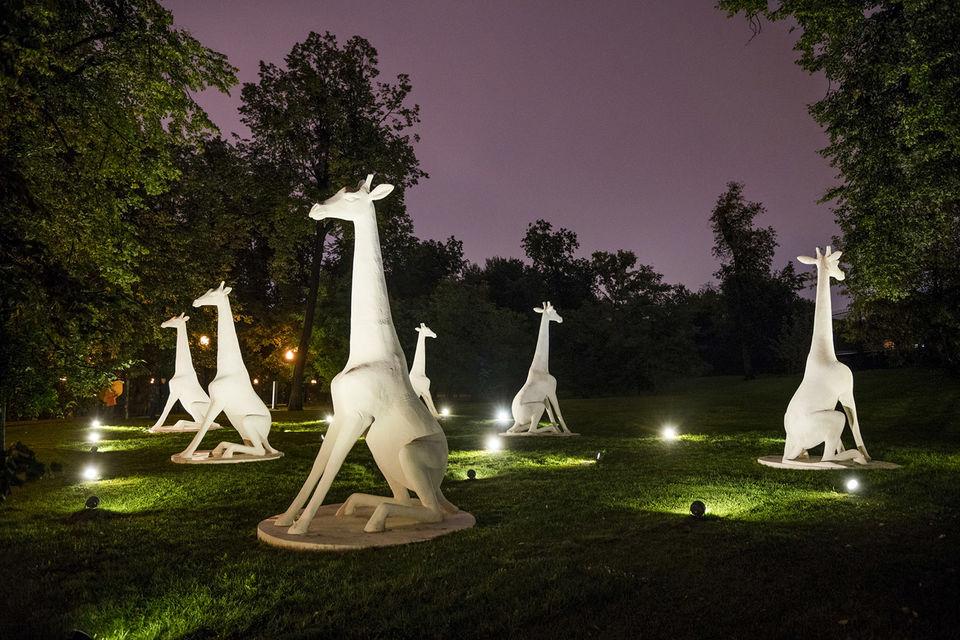 Само название работы «Гости» говорит зрителю о том, что семейство жирафов будто случайно забрело в Парк Горького