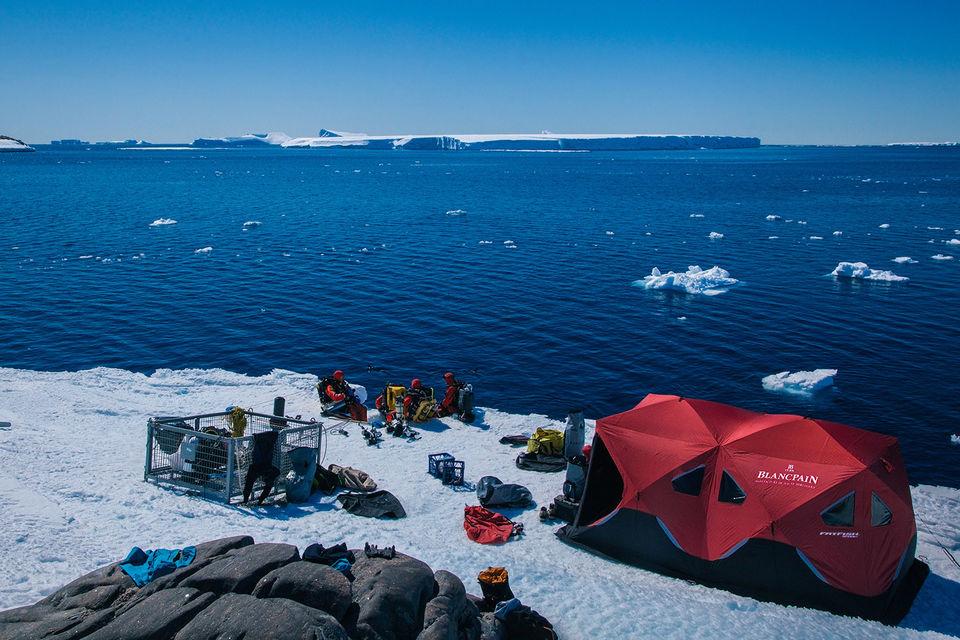 Команда экспедиции Лорана Баллесты «Гомбесса III – Антарктика» расположилась прямо во льдах, на берегу океана