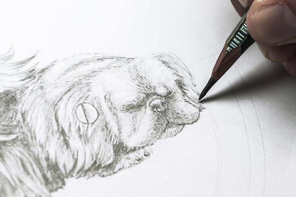 Эскиз к росписи циферблата часов Petite Heure Minute Dog от Jaquet Droz