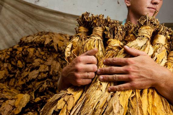 British American Tobacco выкупит Reynolds American Inc. за $49,4 млрд