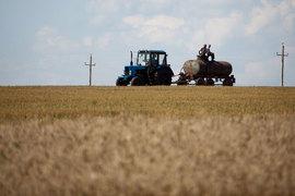 В прошлом году впервые с начала кризиса выросли долларовые цены на сельхозземли