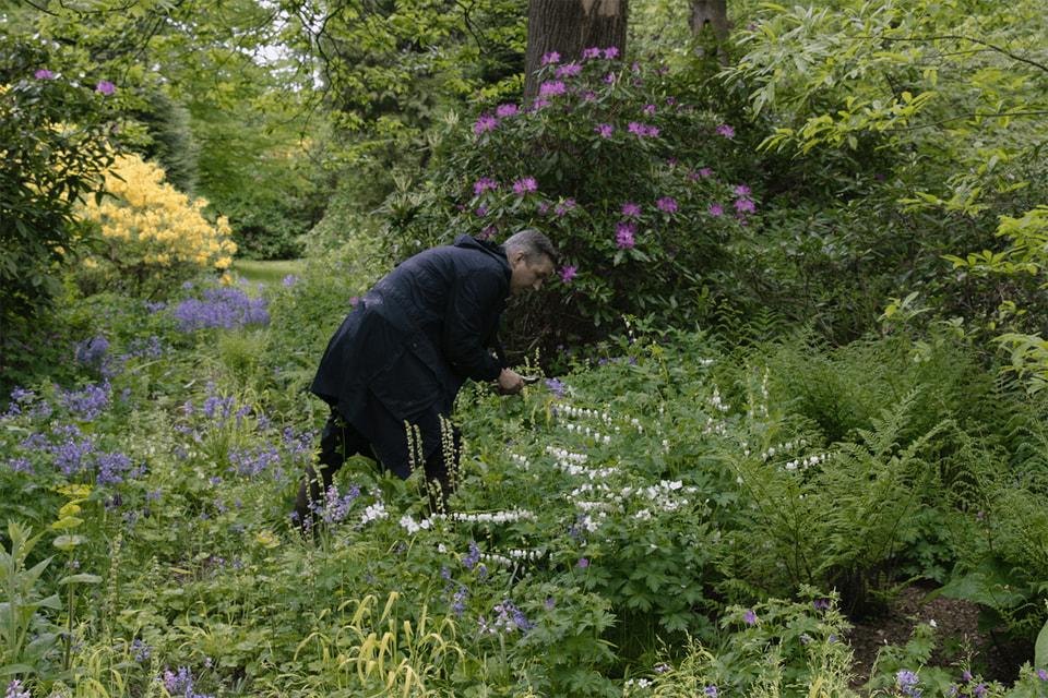 Садоводству Дрис Ван Нотен отдается с такой же страстью, что и процессу дизайна