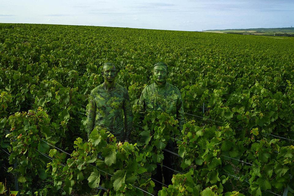 Лю Болина вдохновили виноградники Ruinart