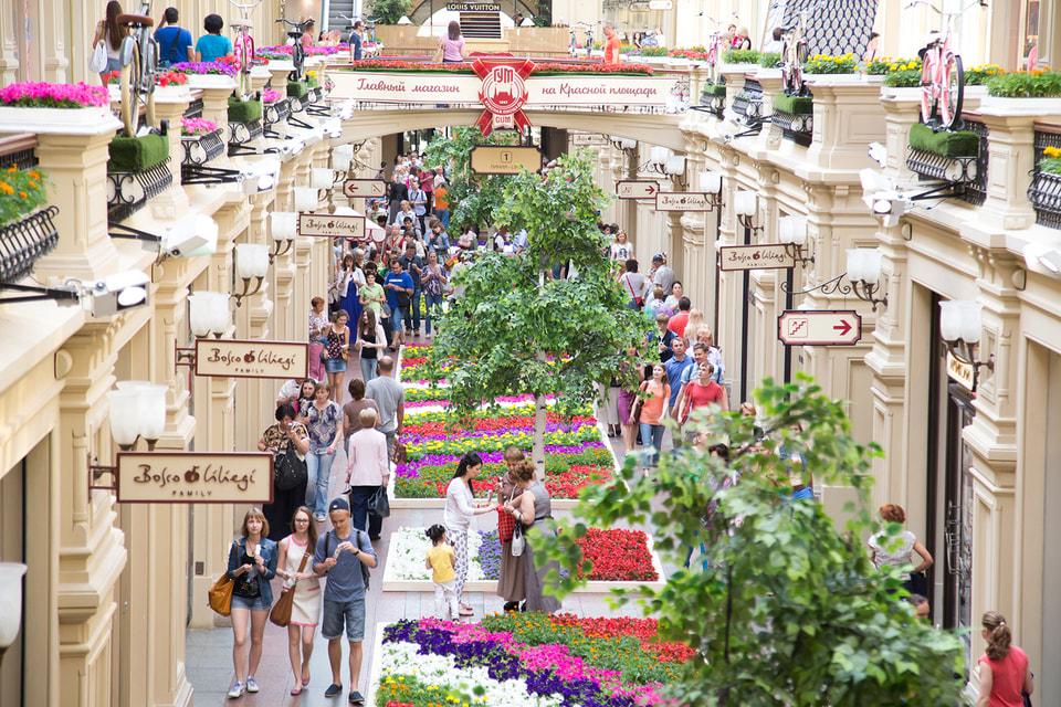 Для Фестиваля было выращено 370 000 цветов