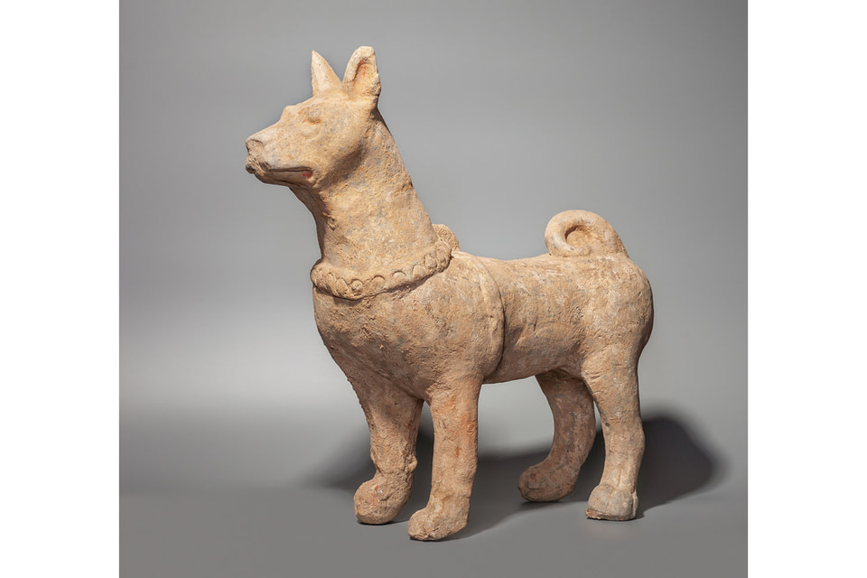 Как известно, 2018 год — это год Земляной Желтой Собаки.