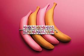 Браслет Andy Warhol из коллекции Wild Pop, Bvlgari