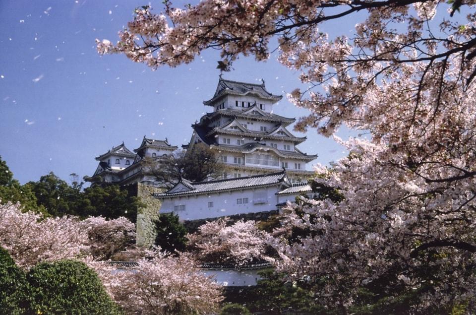 Замок Химэдзи является национальным сокровищем, а также охраняется ЮНЕСКО