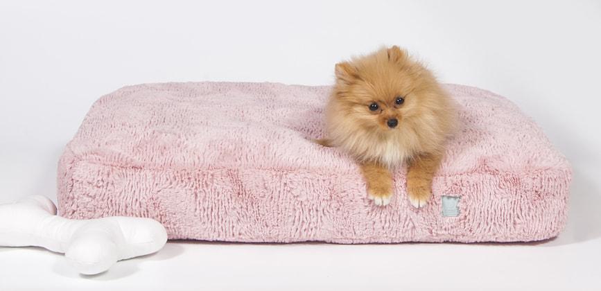 В бутике bedforpet представлены изысканные предметы интерьера, игрушки и различные аксессуары для кошек и собак