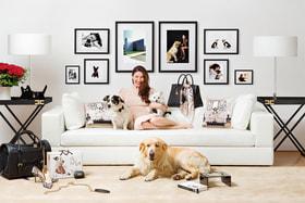 Дизайнер Элизабетта Франки обожает собак и помогает им