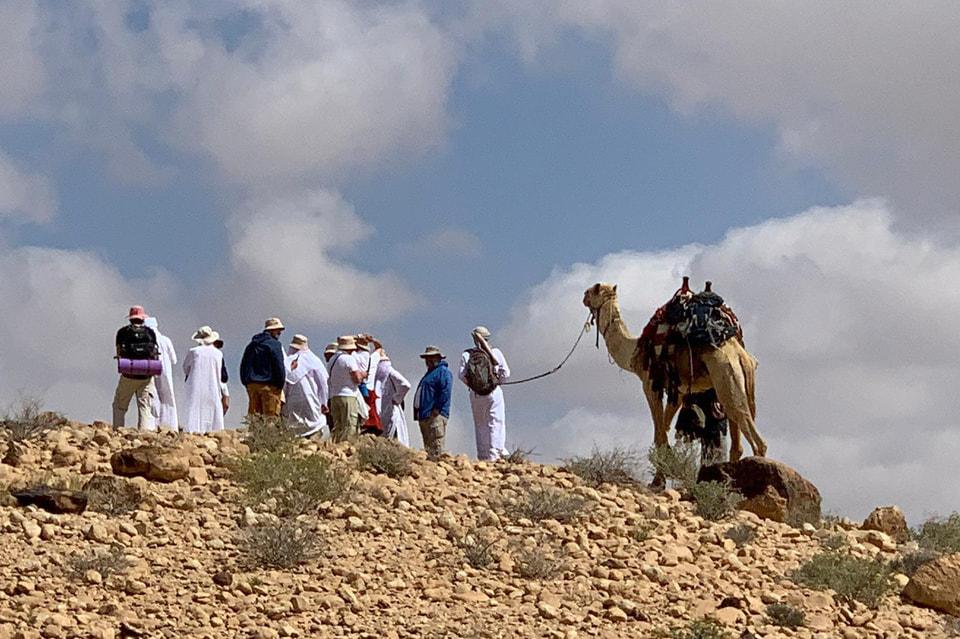 Несмотря на статус участников группы, машин сопровождения с ними не было – только верблюды