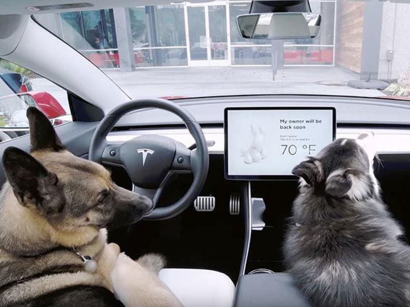 Экран на приборной панели показывает температуру внутри салона автомобиля