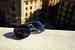 Линия очков Santos de Cartier вдохновлена коллекцией одноименных часов французского Дома. В свою очередь облик часов в начале XX века родился из увлечения авиацией и позаимствовал детали конструкции самолета. Теперь переплетение разных элементов можно видеть в дизайне новых мужских солнцезащитных очков Cartier: классическая каплевидная форма «авиаторов» получила геометрическое решение, как у корпуса часов, а стекло прикреплено к металлической оправе гвоздями, как на безеле часов и на фюзеляже старинных самолетов