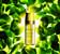 Питательная эмульсия для лица с маслом голубой орхидеи L'Or des Plantes