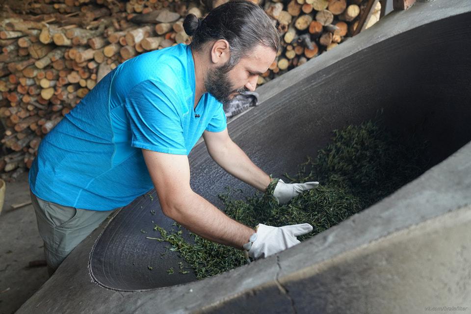 Чайное производство работает и во время пандемии