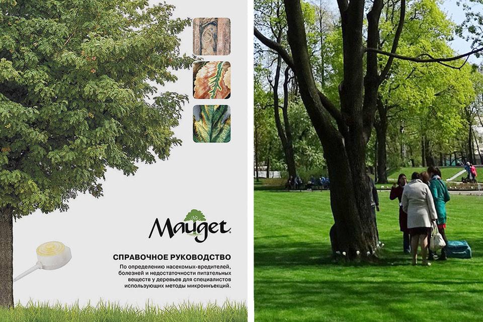 Обложка справочника. На фото справа: белые флаконы на стволе дерева внизу и есть те самые инъекции Mauget
