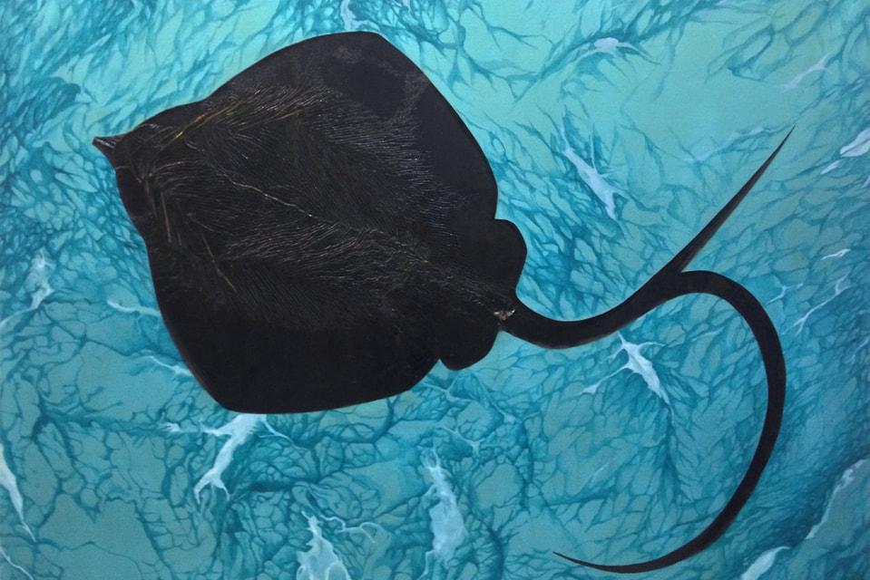 «Скат» – работа художников Глеба Скубачевского и Елены Ямлихановой