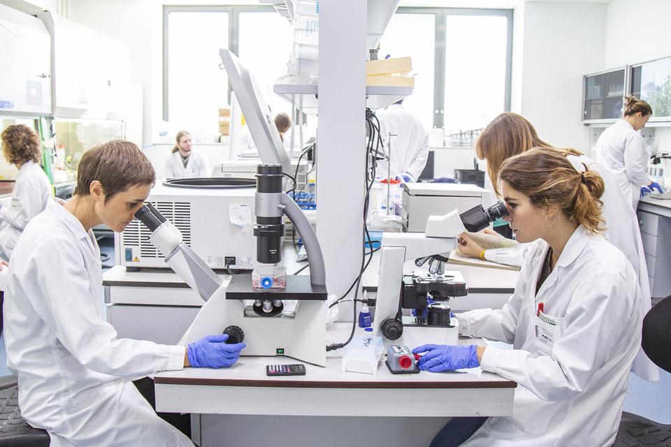 Бренд оказывает содействие Университету Humanitas в разработке средств для диагностики и лечения коронавируса