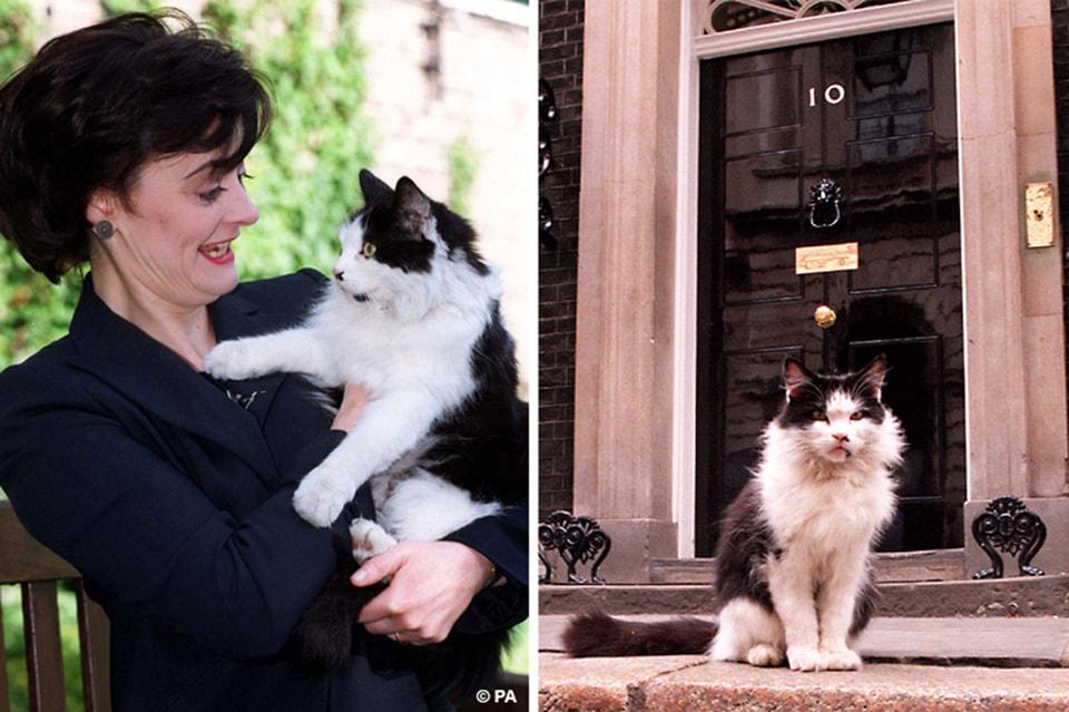 Жена премьер-министра Шери Блэр пыталась изобразить любовь, но выражение ее лица и мордочки Хамфри явно говорило: любви не будет
