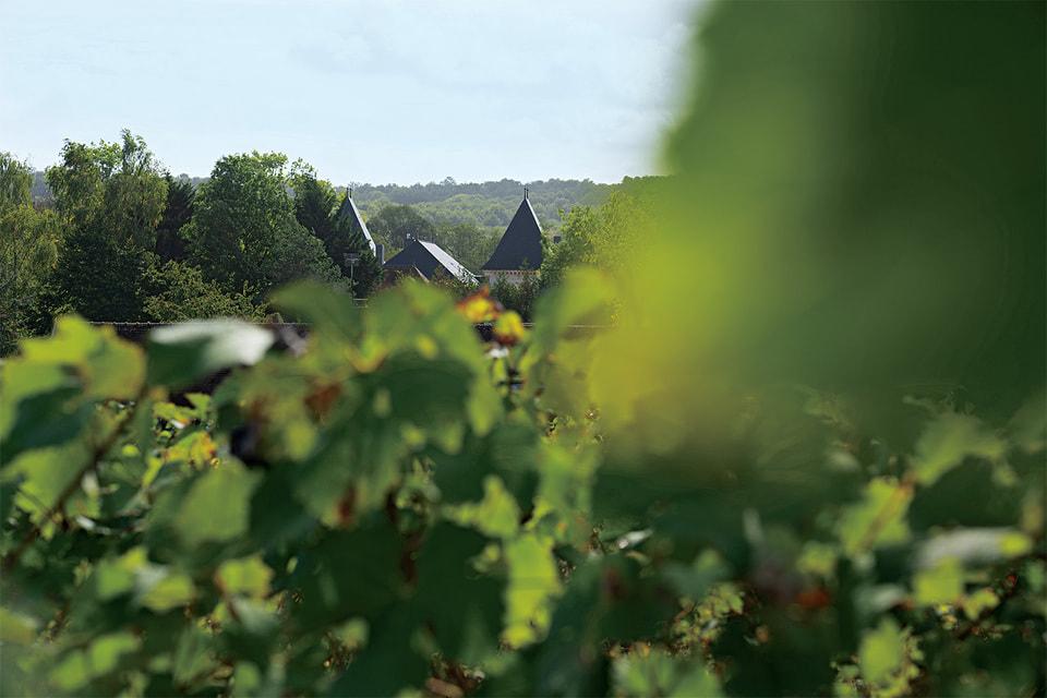 История Champagne Ullens началась с разрушенного замка Марзили в 14 км от Реймса