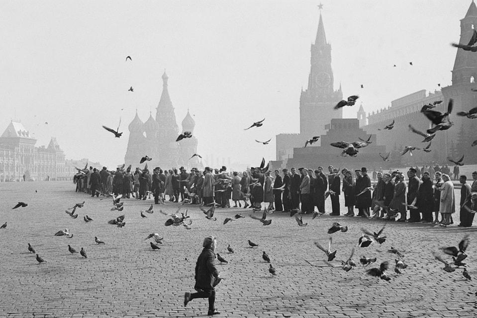 Наум Грановский.  Голуби на Красной площади. К Ленину. 1950-е