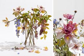 Художница Лилла Табассо старается довести технику по созданию стеклянных цветов до виртуозности, чтобы добиться натурализма
