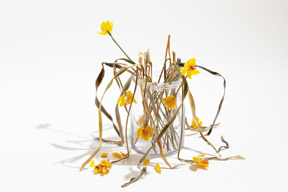 Лилла не воспроизводит срезанные и засушенные цветы – она передает непрерывный круговорот жизни, когда в природе цветущие растения соседствуют с увядшими