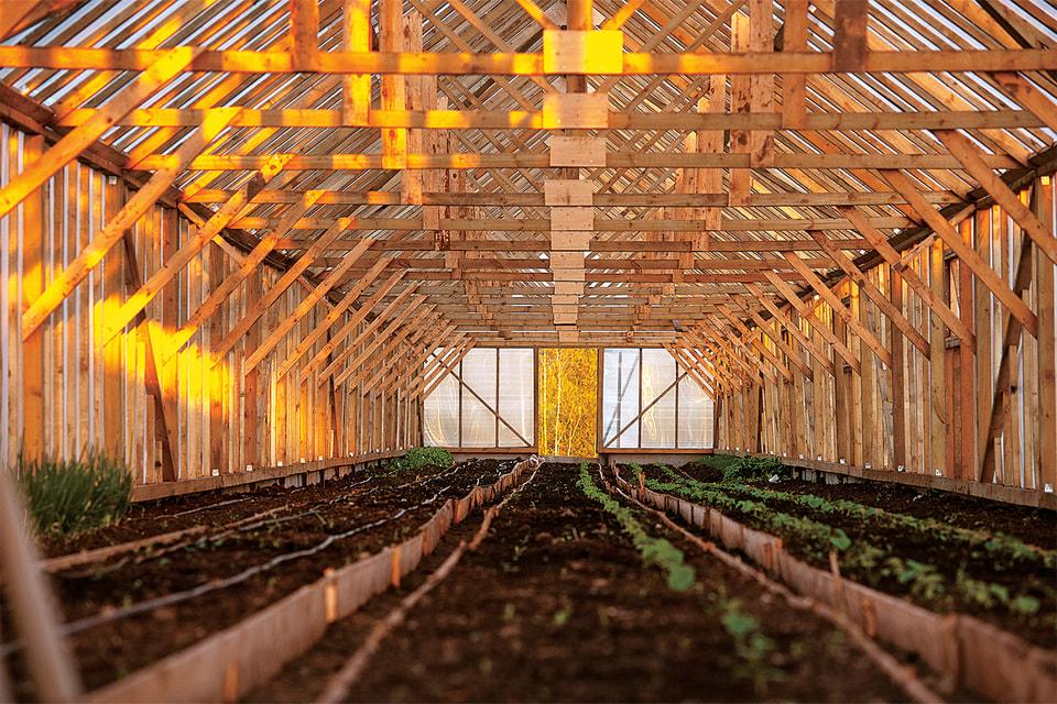 Овощи, молочная продукция и птица, выращенные коммунарами, поступают в ресторанные проекты Gutsait Group
