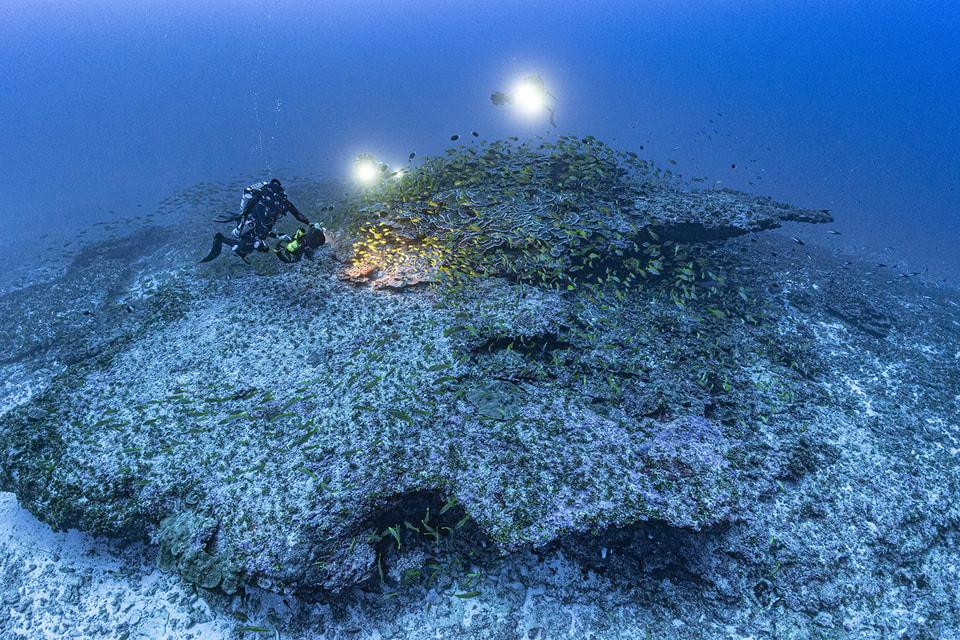Исследователь Лоран Баллеста и его дайвинг-команда у подводной горы La Perouse