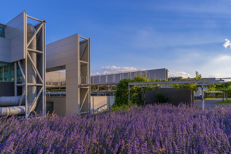 Сотрудникам Prada Group предоставляются разносторонние возможности для развития их творческого потенциала, а все офисы и фабрики компании созданы по высоким экологическим стандартам