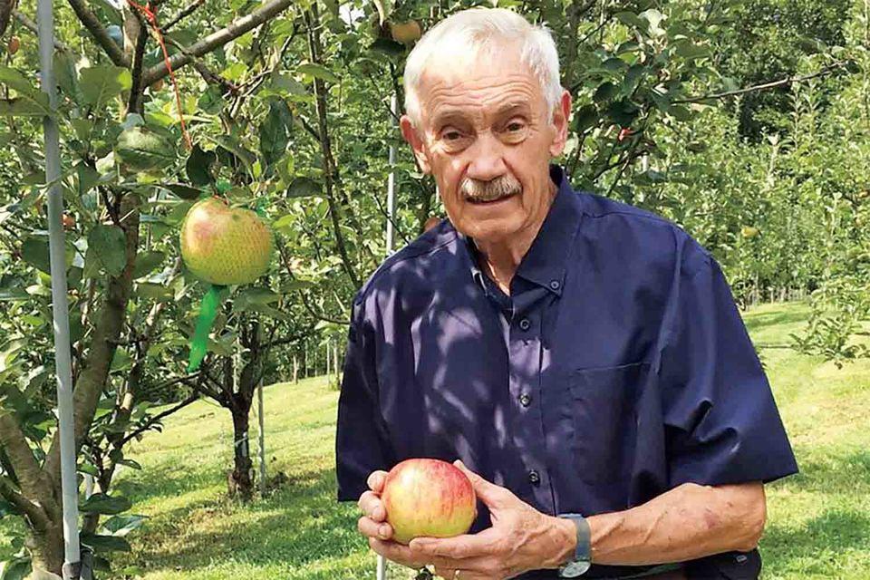 Сыщик по яблокам Том Браун ищет старинные сорта яблок в самых разных местах: встарых газетах, на картах и даже в мемуарах