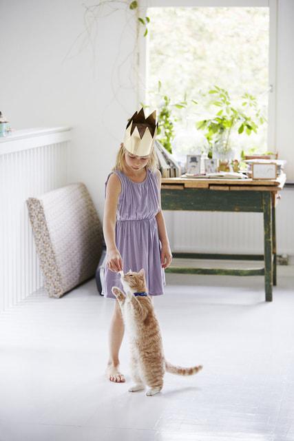 Кошачье мурлыканье оказывает благоприятное терапевтическое воздействие на человеческий организм