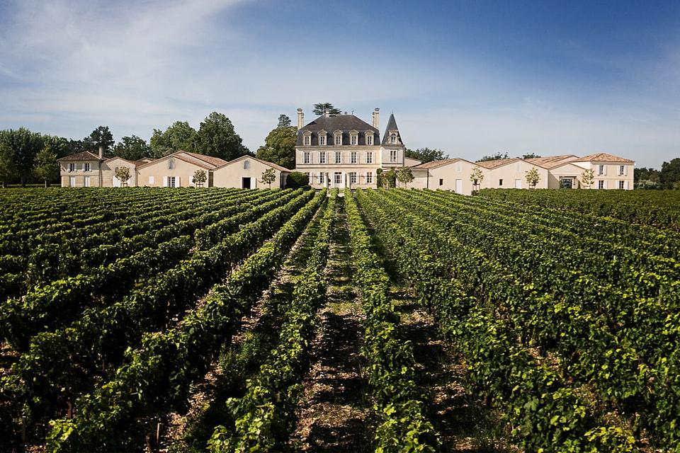 Инвестиционная привлекательность вина определяется урожаем: от осадков и температуры воздуха до состояния почвы