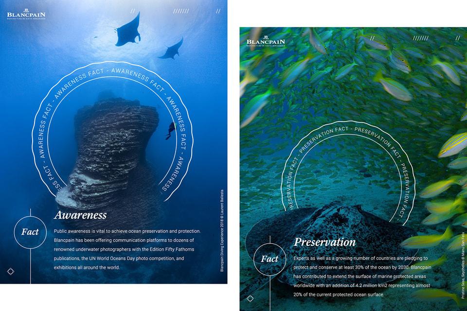 В рамках Всемирного дня океанов ООН ведется просветительская деятельность, которая раскрывает важность защиты мирового океана
