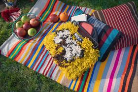 Чтобы устроить стильный пикник на природе достаточно всего несколько ярких элементов