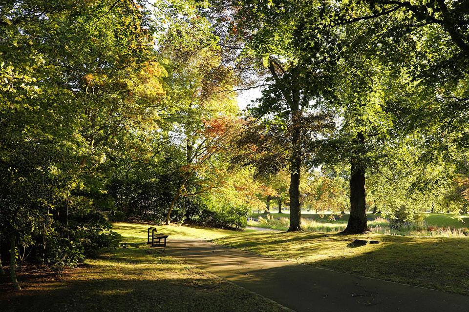 Больше других свои городские парки ценят жители Казани, Москвы и Краснодара