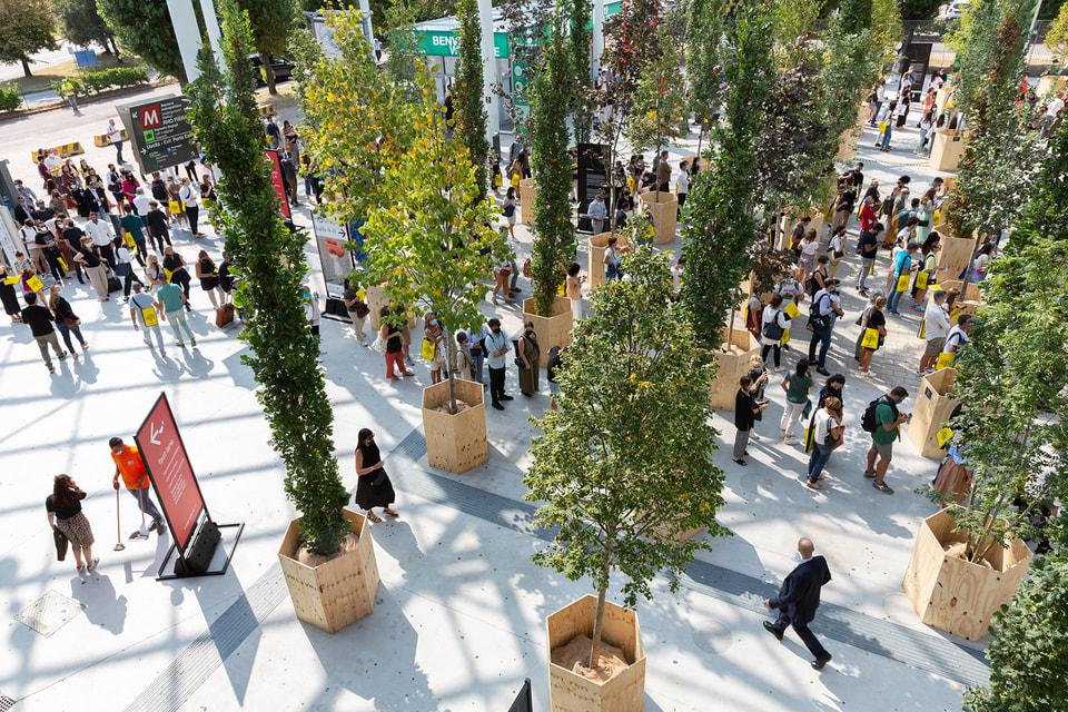 При входе на выставку устроили целый парк из деревьев в кадках, чтобы подчеркнуть: близость к природе стала особенно важна после пандемии