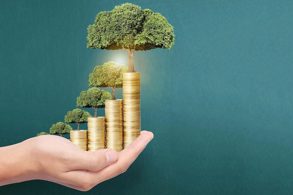 Траст и личный фонд обеспечат бесперебойную работу активов