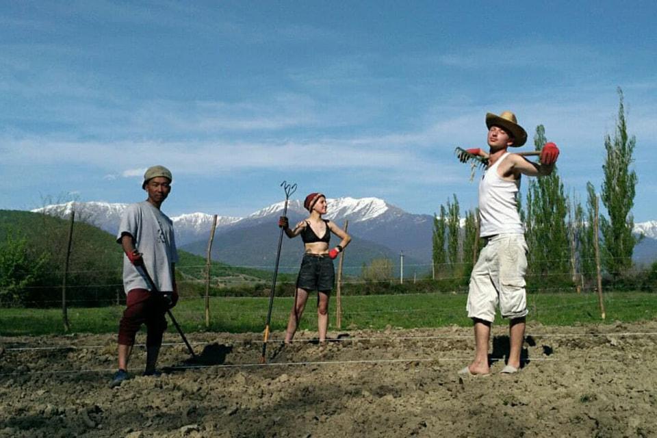 Строить «Шато Шапито» помогали добровольцы из более чем 20 стран